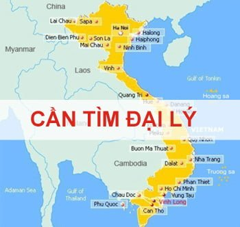tim-dai-ly