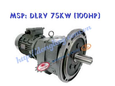 DLRV 100HP - 75KW