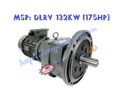 Motor giảm tốc tải nặng DLRV 175HP/132KW