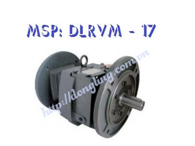 dau-giam-toc-DLRMV 17