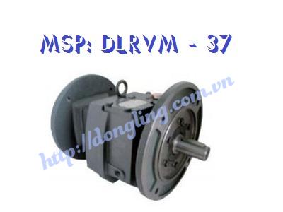 dau-giam-toc-DLRVM 37
