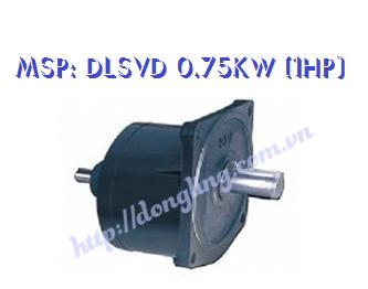 dau-giam-toc-DLSVD 0.75KW