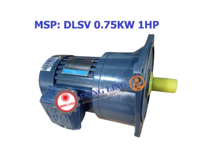 DLSV0.75KW